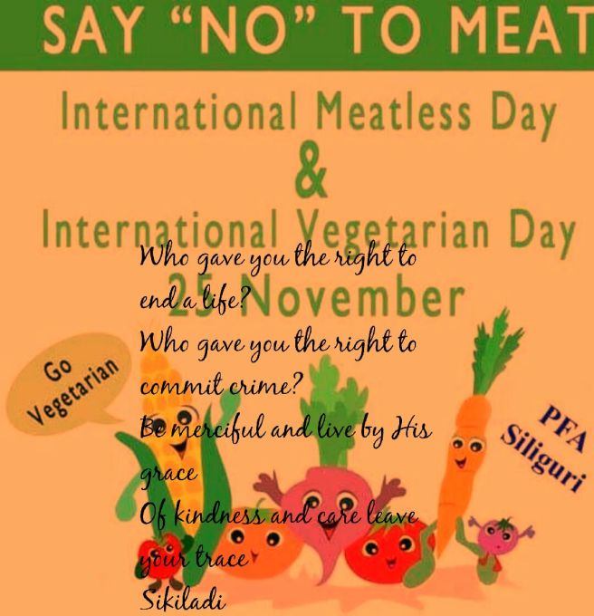 Meatless day 2